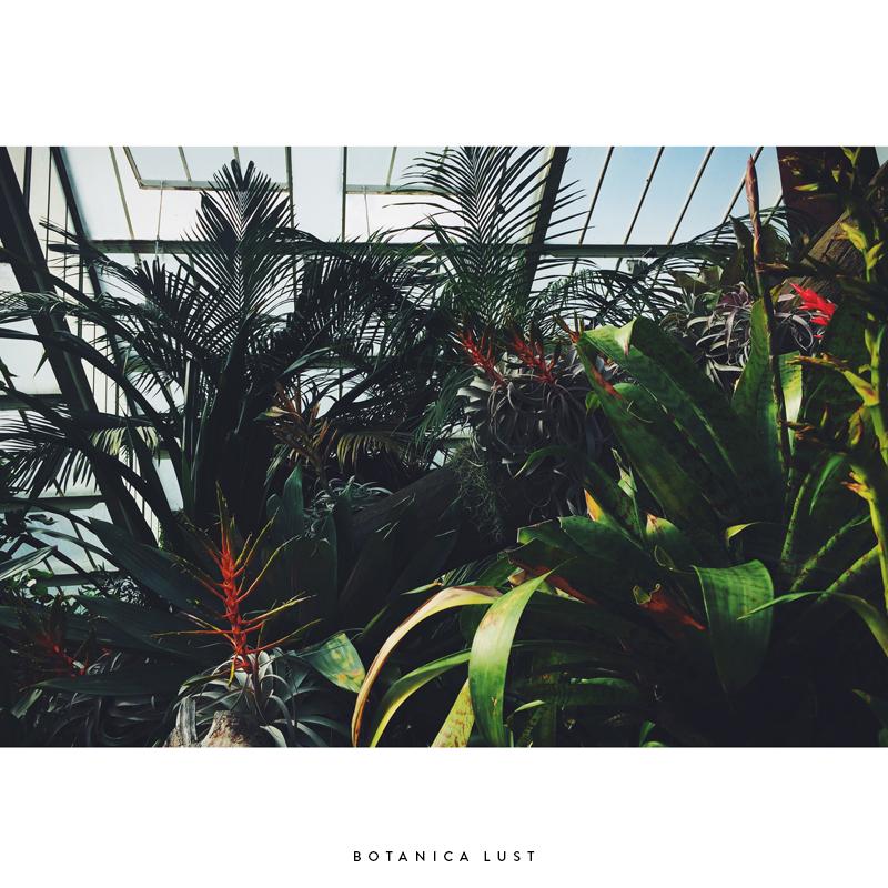 Botanica Lust by Compass Island.