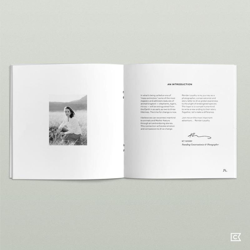 renderloyalty-mediakit01