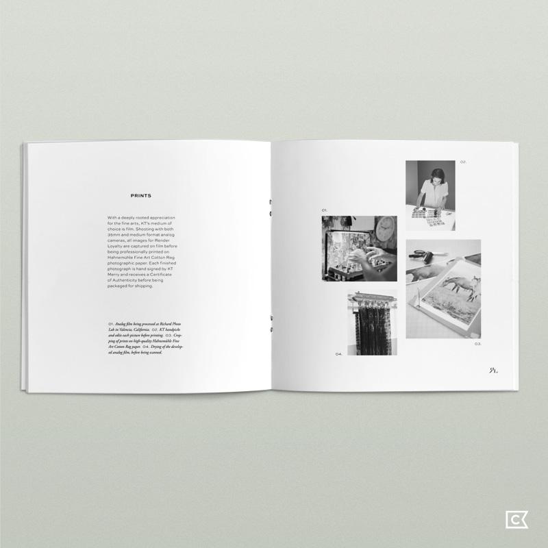 renderloyalty-mediakit05