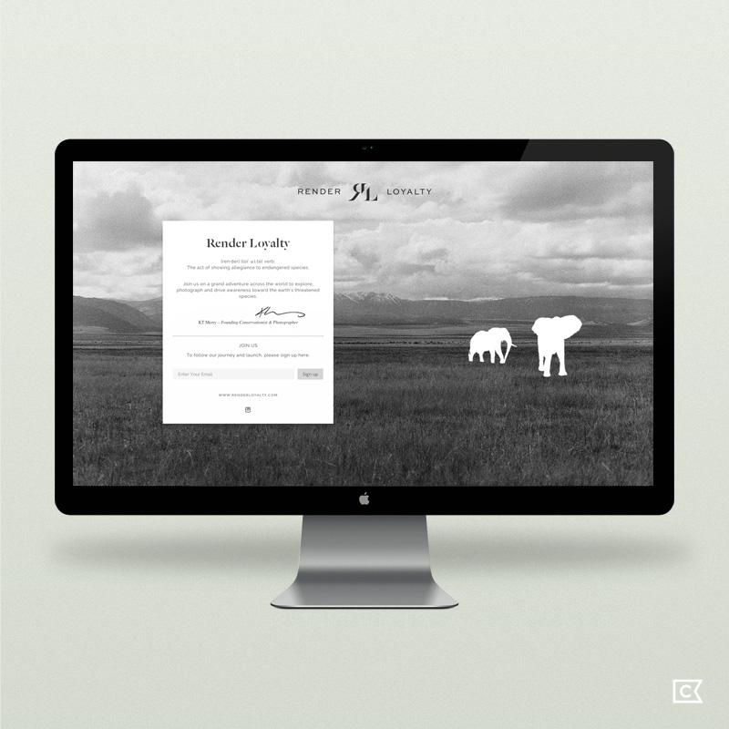 renderloyalty-website01